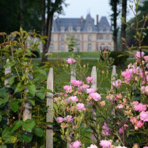 fleurs du château des boulard